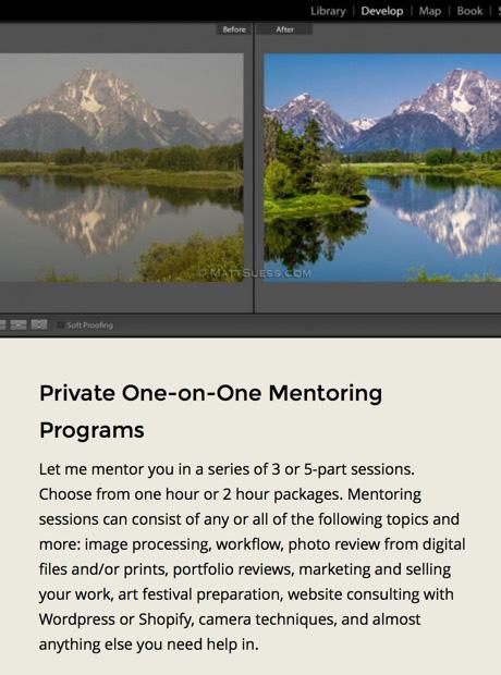 1on1 mentoring