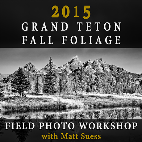 2015-Teton-Fall-Square-460px