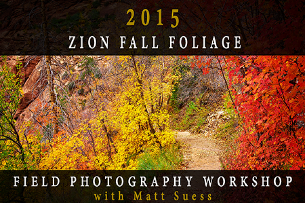 2015 Zion National Park Fall Foliage Field Photography Workshop