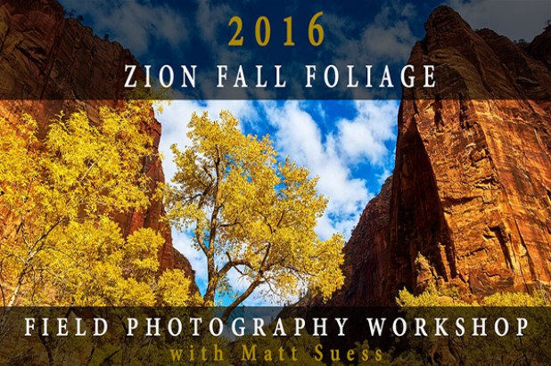 2016 Zion National Park Fall Foliage Field Photography Workshop