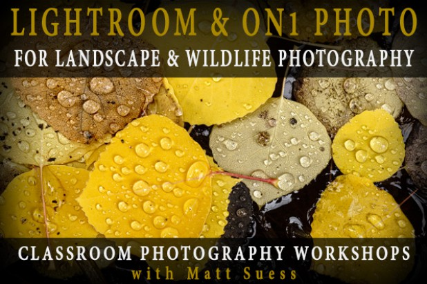 Lightroom & ON1 Photo 10 Two-Day Class