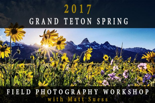 2017 Grand Teton National Park Spring Photography Workshop